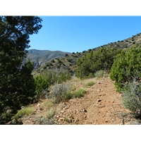 Black Canyon Trail #114