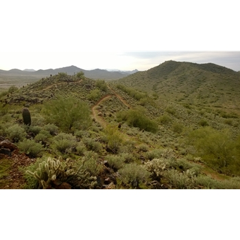 Apache Vista Loop Trail